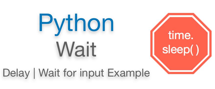 Python wait | How to Python wait for input