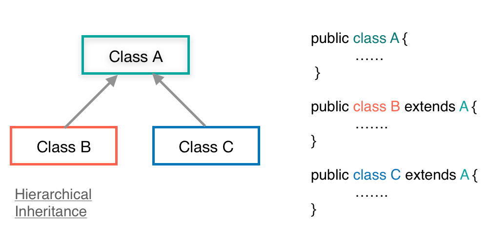 Example code of Hierarchical Inheritance in Java
