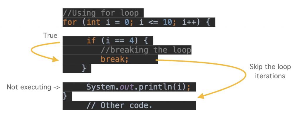HowJava break for loop Works statement