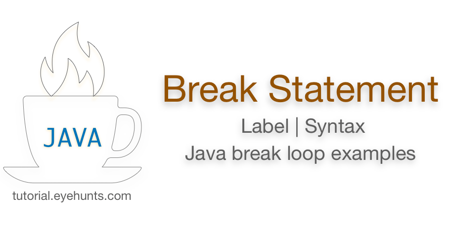 Java break Statement, Label with Java break for loop , while and if example