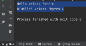 convert a string to bytes encode