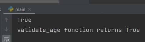 Python check if the function returns True